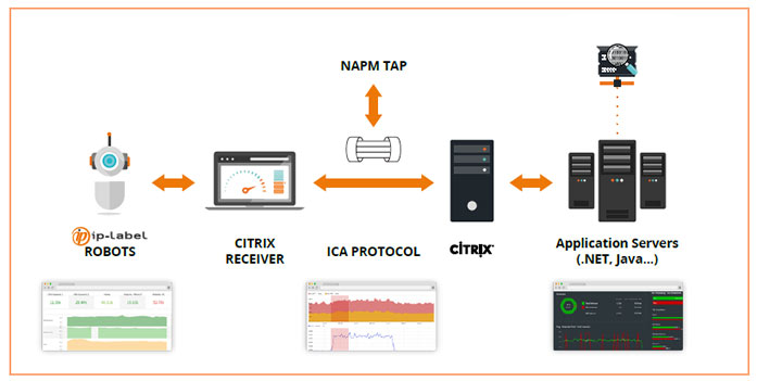 Citrix monitoring
